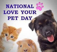 National Love Your Pet Day   2.20.2020